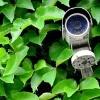<h3>היכן מומלץ להתקין מצלמות לבית פרטי?</h3>
